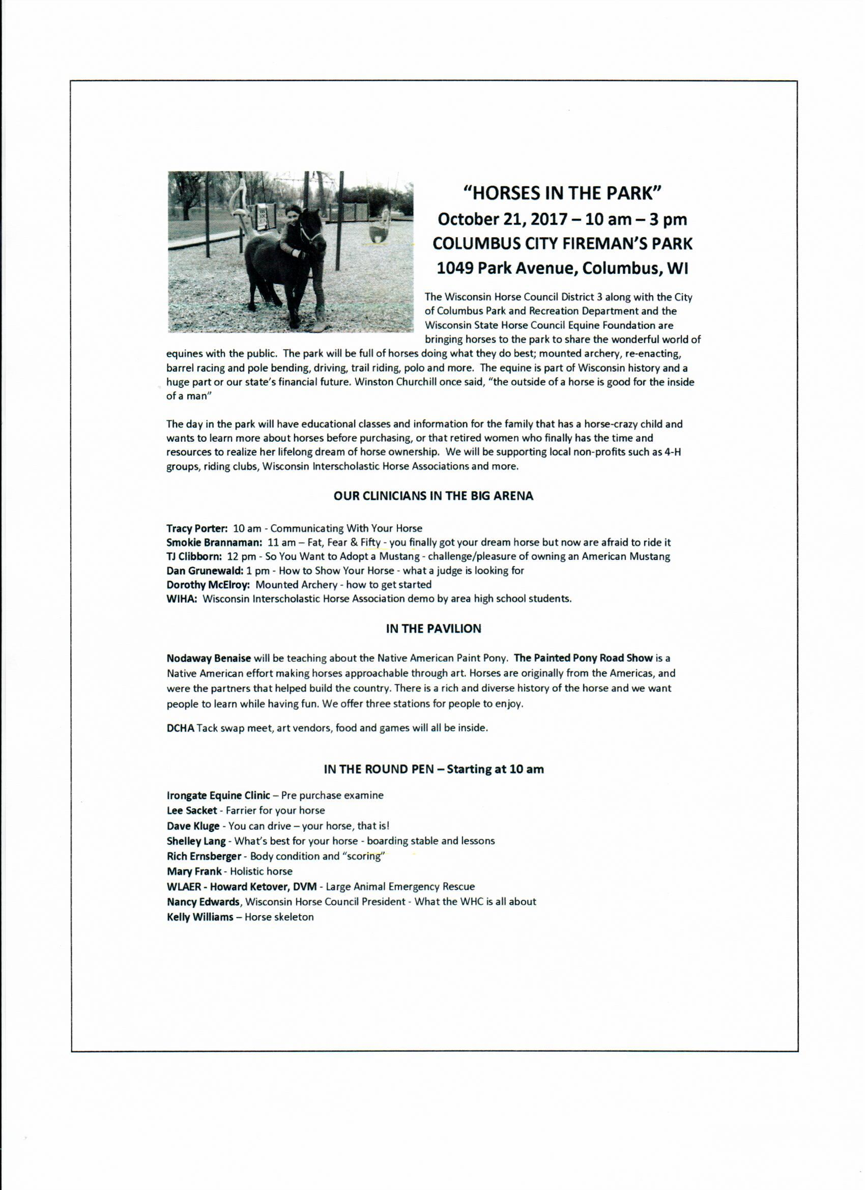 D3 horses in the Park Flyer